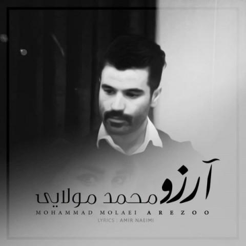 دانلود موزیک جدید محمد مولایی آرزو