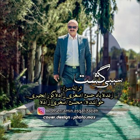 دانلود موزیک جدید محسن اصغری زاده سببی گشت