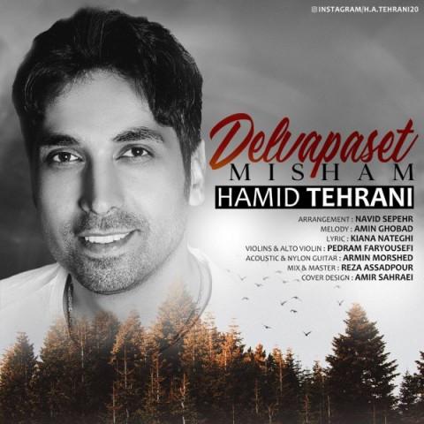 دانلود موزیک جدید حمید تهرانی دلوا پست میشم