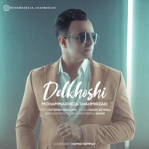 دانلود موزیک جدید محمدرضا شاهمیرزایی دلخوشی