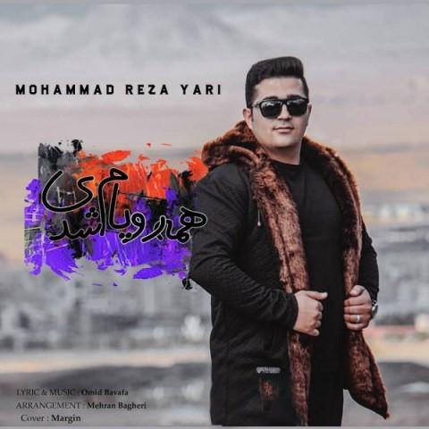 دانلود موزیک جدید محمد رضا یاری همه رویام شدی