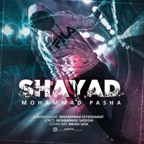 دانلود موزیک جدید محمد پاشا شاید