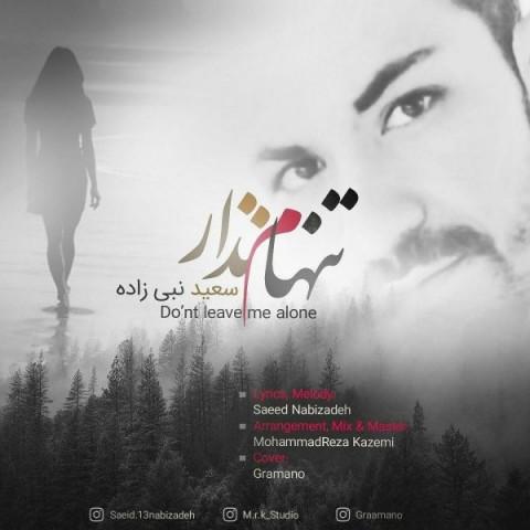 دانلود موزیک جدید سعید نبی زاده تنهام نذار