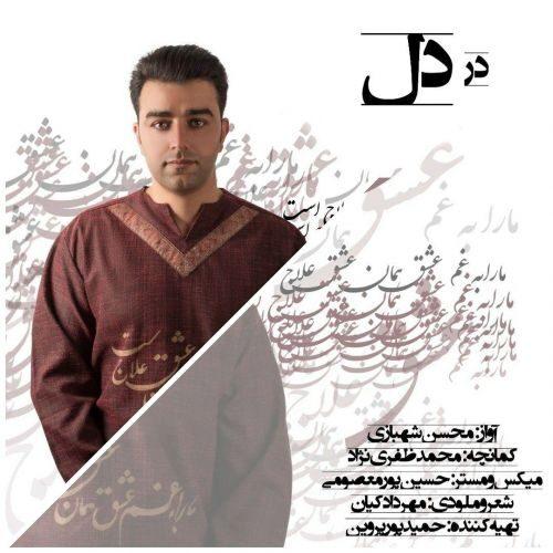 دانلود موزیک جدید محسن شهبازی در دل