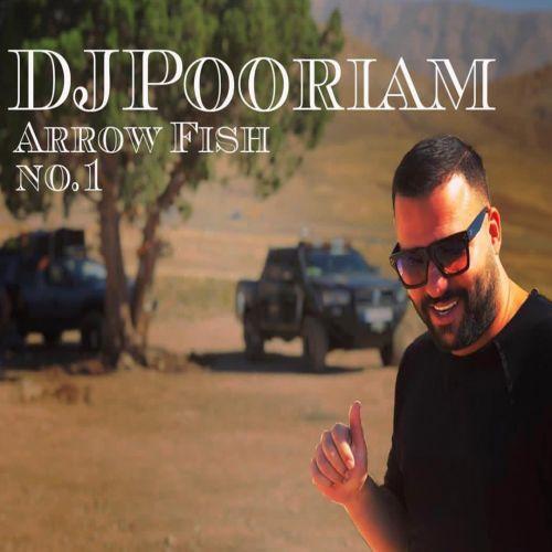 دانلود موزیک جدید دیجی پوریام Arrow Fish No1