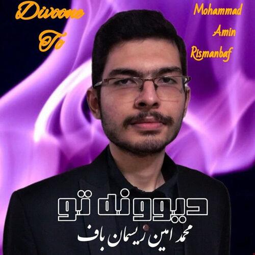 دانلود موزیک جدید محمد امین ریسمان باف دیوونه تو