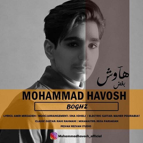 دانلود موزیک جدید محمد هاوش بغض