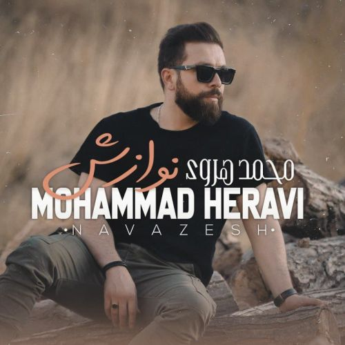 دانلود موزیک جدید محمد هروی نوازش